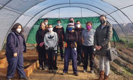 El programa operativo de empleo forma en jardinería a jóvenes con discapacidad