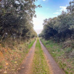 Ayuntamiento de Argamasilla de Calatrava y ADIF trabajan en el convenio que creará una vía verde por la antigua ruta de 'el trenillo'