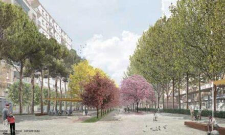 Aprobado el proyecto básico y la ejecución de la remodelación del Paseo del Bosque